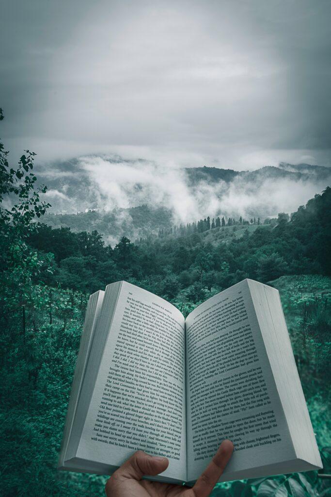 książka, książki, czytać