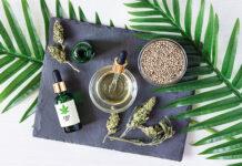 Marihuana w Polsce i na świecie